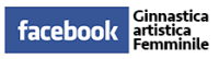 Facebook Ginnastica