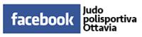 Facebook Judo